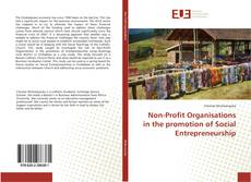 Non-Profit Organisations in the promotion of Social Entrepreneurship的封面