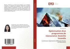Capa do livro de Optimisation d'un programme de réassurance: branche incendie
