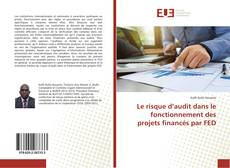 Copertina di Le risque d'audit dans le fonctionnement des projets financés par FED