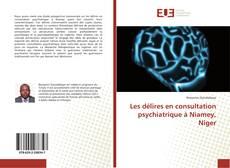 Portada del libro de Les délires en consultation psychiatrique à Niamey, Niger