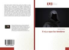 Bookcover of Il n'y a que les ténèbres