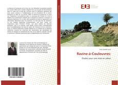Capa do livro de Ravine-à-Couleuvres: