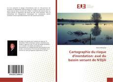 Cartographie du risque d'inondation: aval du bassin versant de N'Djili的封面