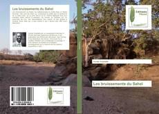 Bookcover of Les bruissements du Sahel