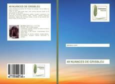 Bookcover of 49 NUANCES DE GRISBLEU