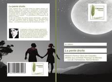 Borítókép a  La pente droite - hoz