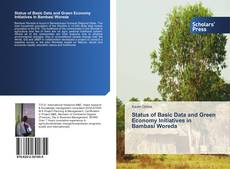 Обложка Status of Basic Data and Green Economy Initiatives in Bambasi Woreda