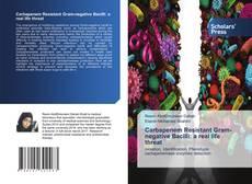 Capa do livro de Carbapenem Resistant Gram-negative Bacilli: a real life threat