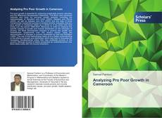 Bookcover of Analyzing Pro Poor Growth in Cameroon
