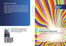 Bookcover of Multicultural Citizenship