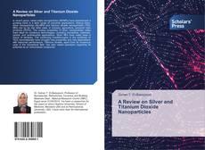 Copertina di A Review on Silver and Titanium Dioxide Nanoparticles