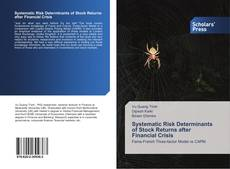 Bookcover of Systematic Risk Determinants of Stock Returns after Financial Crisis