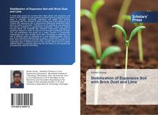 Bookcover of Stabilization of Expansive Soil with Brick Dust and Lime