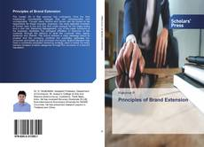 Bookcover of Principles of Brand Extension