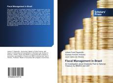 Bookcover of Fiscal Management in Brazil