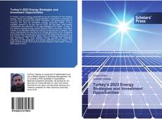 Bookcover of Turkey's 2023 Energy Strategies and Investment Opportunities