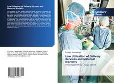 Bookcover of Low Utilisation of Delivery Services and Maternal Mortality