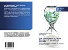 The Determinants of Capital Structure: Evidence from Pakistan kitap kapağı