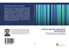 Bookcover of Elektrooptisch induzierte Wellenleiter