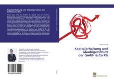 Bookcover of Kapitalerhaltung und Gläubigerschutz der GmbH & Co KG
