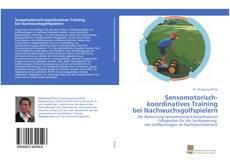 Bookcover of Sensomotorisch-koordinatives Training bei Nachwuchsgolfspielern