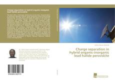 Bookcover of Charge separation in hybrid organic-inorganic lead halide perovskite