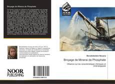 Bookcover of Broyage de Minerai de Phosphate