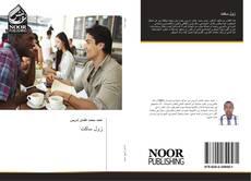 Bookcover of زول ساكت