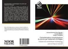 Buchcover von Caractérisation morphologique du poivre par traitement d'images