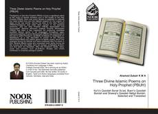 Three Divine Islamic Poems on Holy Prophet (PBUH) kitap kapağı
