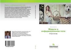 Bookcover of Модели в информационном поле