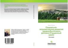 Bookcover of Социально-экономическое развитие трудоизбыточного региона (Упущенный шанс)