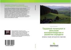 Bookcover of Трудовой потенциал в сельском воспроизводстве и развитии агродела
