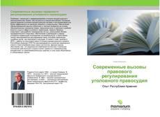 Bookcover of Современные вызовы правового регулирования уголовного правосудия