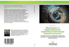 Обложка Мониторинг в территориально-отраслевых комплексах социальных услуг