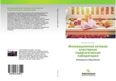 Инновационная сетевая кластерная педагогическая лаборатория kitap kapağı