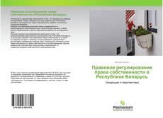 Bookcover of Правовое регулирование права собственности в Республике Беларусь