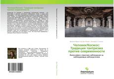 Bookcover of Человек/Космос: Традиция тантризма против современности