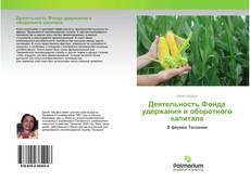 Bookcover of Деятельность Фонда удержания и оборотного капитала