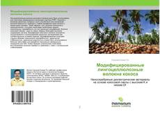 Модифицированные лингоцеллюлозные волокна кокоса的封面