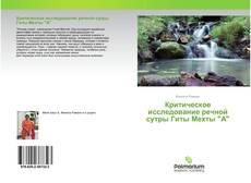 """Bookcover of Критическое исследование речной сутры Гиты Мехты """"А"""""""