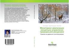 Bookcover of Мониторинг реализации концепции управления природными ресурсами