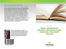 Уроки управления рисками при реализации проектов с быстрой отдачей kitap kapağı