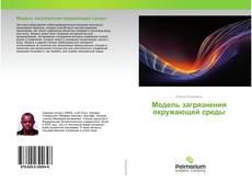 Bookcover of Модель загрязнения окружающей среды