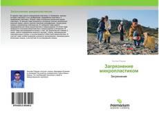 Capa do livro de Загрязнение микропластиком