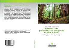 Bookcover of Воздействие углеродистых выбросов от двигателей