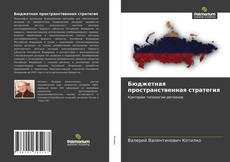 Bookcover of Бюджетная пространственная стратегия