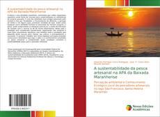 A sustentabilidade da pesca artesanal na APA da Baixada Maranhense的封面