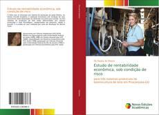 Portada del libro de Estudo de rentabilidade econômica, sob condição de risco