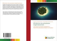 Capa do livro de Eficiência nos processos organizacionais